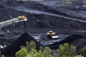 India's Adani to start work on mine near Great Barrier Reef