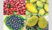 Summer fruits deck city markets