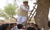 Minister climbs tree to get network on phone (Video)