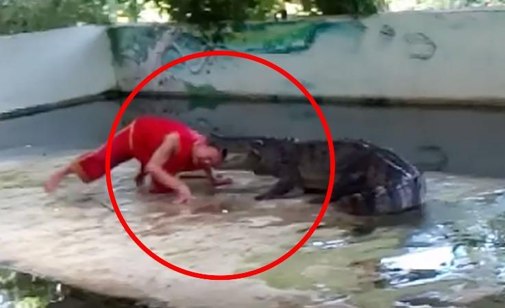 Stunt goes horribly wrong as crocodile bites man's head (Video)