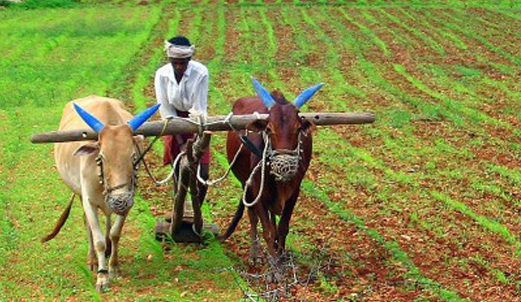 Banks exceed agricultural loan disbursement target for FY17
