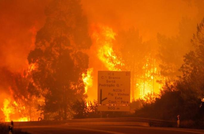 Forest fires kill 57 in central Portugal