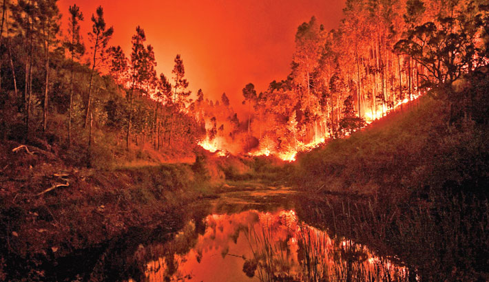 A wildfire is reflected in a stream at central Portugal