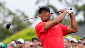 Tiger says he's getting 'professional help'