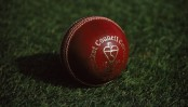 India's share of cricket revenue hiked to $405m: report