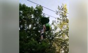 The horrifying moment a girl falls from ride at Six Flags (Video)