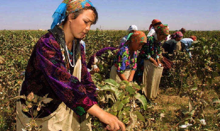 World Bank funding tied to forced labor in Uzbekistan: HRW