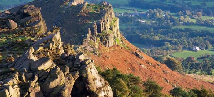 The English moor where wallabies roam