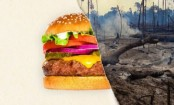 Burger King and South American deforestation