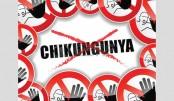 Combating Chikungunya