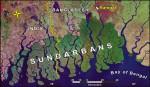 Stop Rampal project  to save Sundarbans