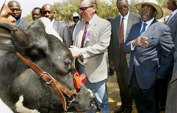 Zimbabwe's Mugabe sells cows to fund AU