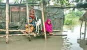Flood engulfs more areas in northern region