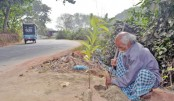 'Forest Man of Bangladesh' planted a tree a day in lifetime