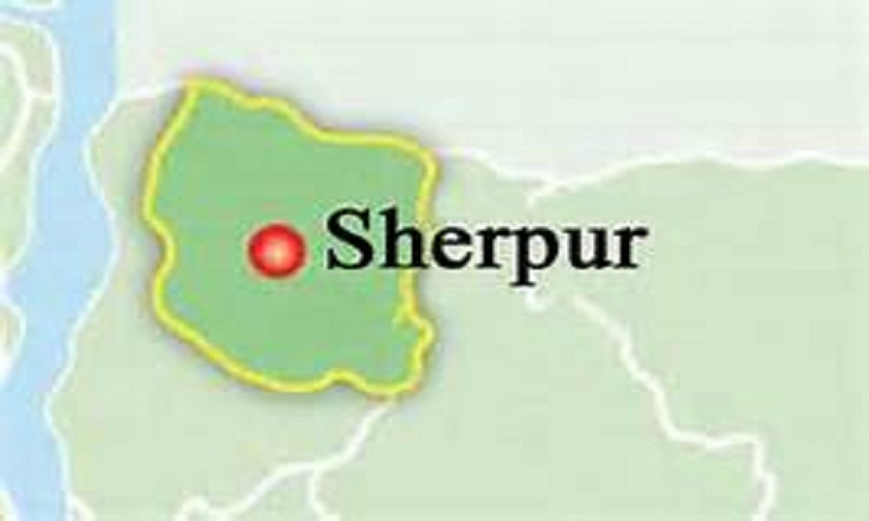 Sherpur man punched to death