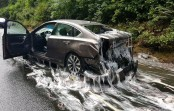 Truck carrying eels overturns, covers cars in slime (Video)