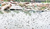 Increasing Agony  Of Dhaka Dwellers