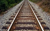 Government to set up Faridpur-Magura rail link