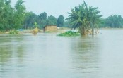 Water levels of 54 rivers rise, 38 fall