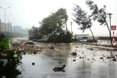 Storm in Vietnam leaves 4 dead, 5 missing