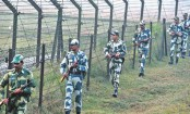Bangladeshi national picked up by BSF in Naogaon
