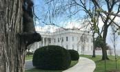 Pentagon withholds military reimbursement to Pakistan