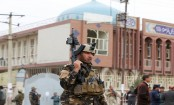 16 Afghan security forces  killed in US bombing