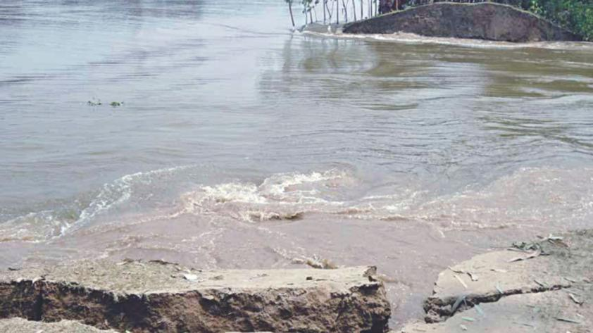 Part of Sirajganj flood control dam collapses again