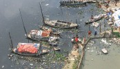 Living organisms facing threat for river pollution: IEDS