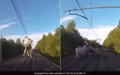 Cyclists attempt riding on roof of moving train (Video)