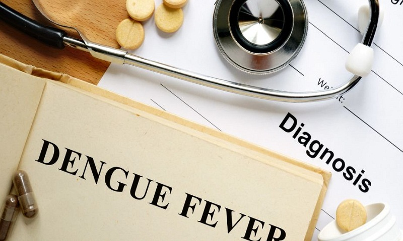 Things that can keep you away from dengue fever