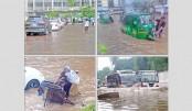 Waterlogging halts life