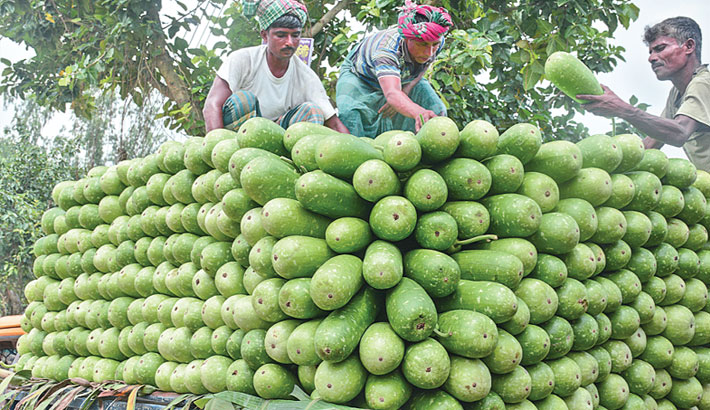 Vegetable prices 3-4 times higher in capital