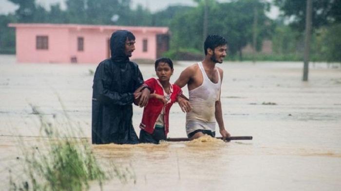 Elephants deployed in Nepal floods rescue efforts
