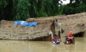 36 killed as heavy rains trigger floods, landslides in Nepal