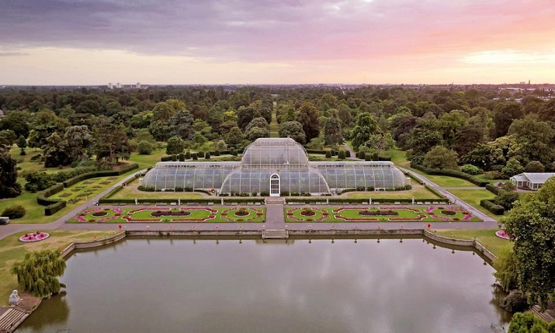 Heading to London? Visit the tropical hothouse at this royal garden