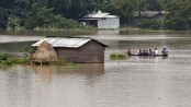 South Asia flood death toll climbs to 250
