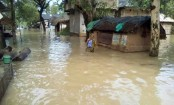Assam floods: Death toll reaches  49