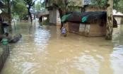 Assam floods: Death toll reaches  49