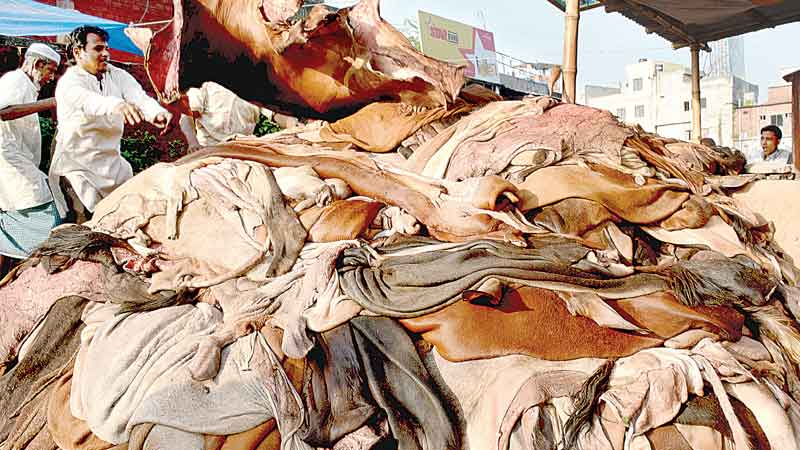 Cattle rawhide price fixed at Tk 50-55