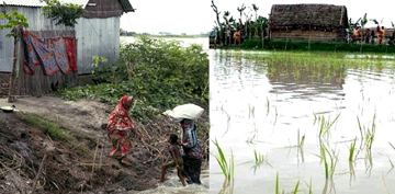 People start returning homes with recession in Brahmaputra Basin