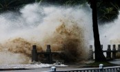 Typhoon Hato: Twelve killed as storm sweeps south China