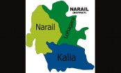 UP chairman shot dead in Narail