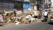 Green activists for Saudi-like animal waste management