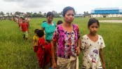 Myanmar troops fire at fleeing Rohingyas
