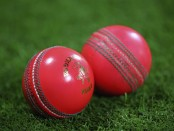 New Zealand to stage inaugural pink-ball Test