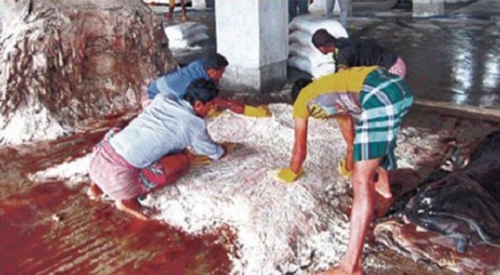 Soaring salt price worries rawhide traders