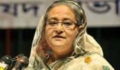 Work to establish Bangladesh as dignified country: PM