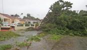 Hurricane Irma hits Florida, 3 dead