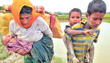 Rohingyas face humanitarian disaster in Cox's Bazar